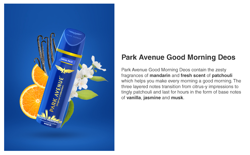 Park Avenue Good Morning Deodorant For Men 220 ml