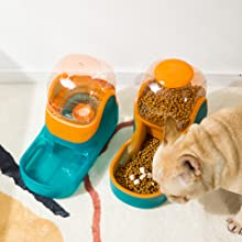 Feeder and waterer for dogs and cats