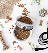 Black striped pet bowl filled with food