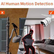 AI Motion Detection