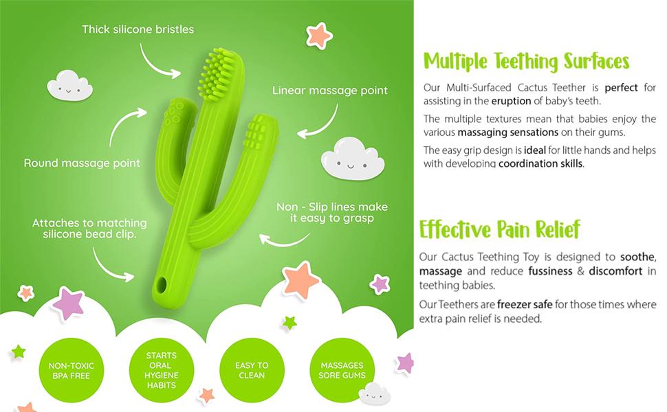cactus toothbrush
