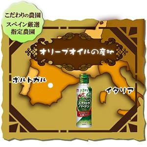 味の素 J-オイルミルズ Jオイル オリーブオイル オリーブ エクストラバージン EV EXV フルーティー 早摘み 新鮮 油 オイル イタリアン フレンチ オレイン酸 新鮮 指定農園 スペイン