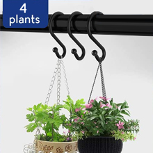 For plants