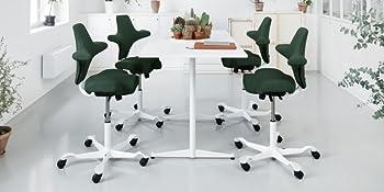 Capisco Adjustable Desk Chair