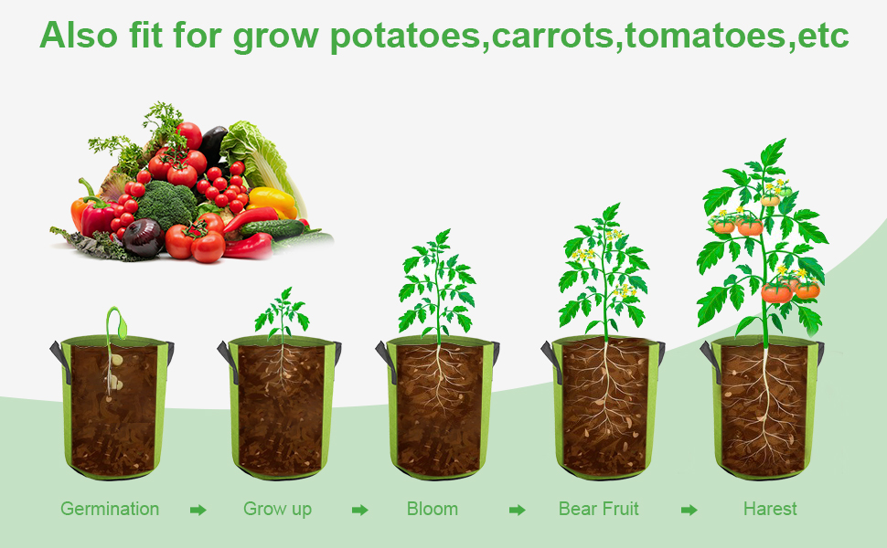 grow bag 2