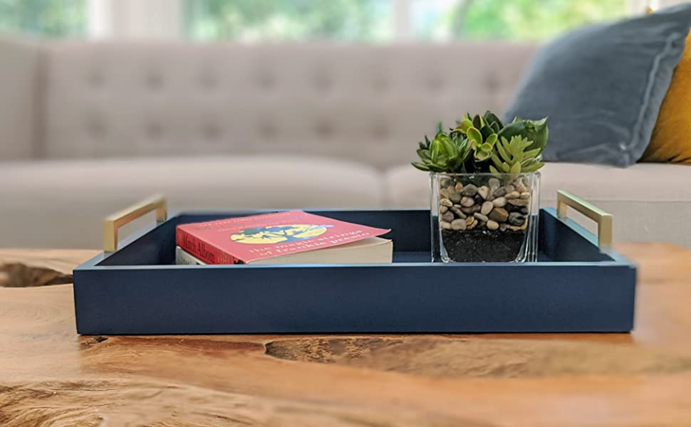 Blue Tray on Coffee Table