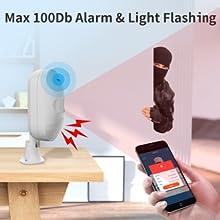 Alarm & Light Flash