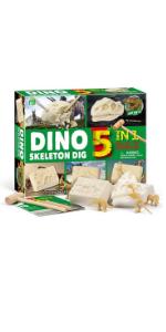 5 in 1 dinosaur excavation kit