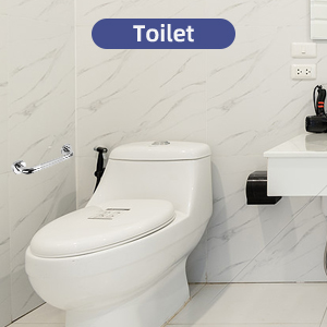 Use in the toilet