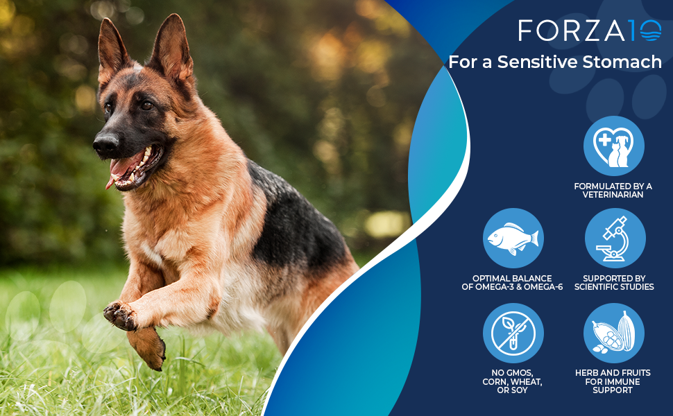 German Shepherd Happy on the left and Forza10 product benefits on the right