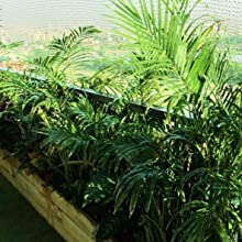 garden neeting