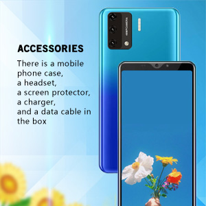 Accessories  has a case ,a hesdset ,a screen protector.....