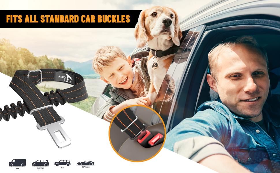 dog car seat belts