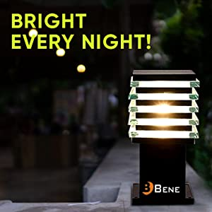 Bright Every Night!