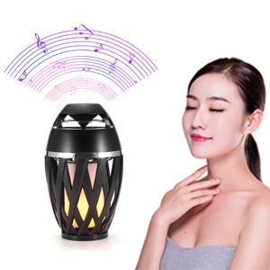HD Audio Speaker