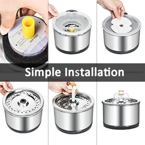 pet water fountain dog with for