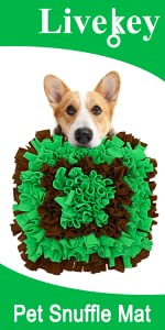 Snuffle Mat-Brown and Green