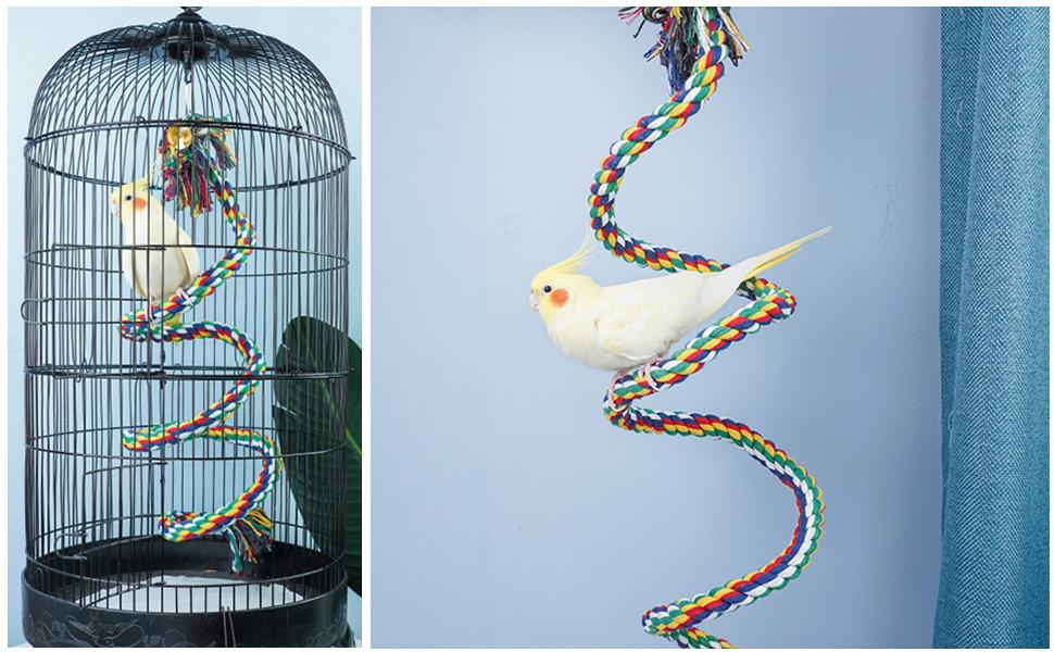 bird rope perch
