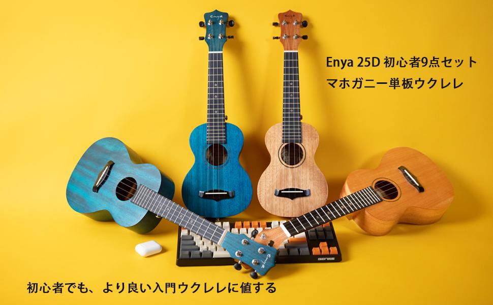 マホ単板が入門機Enya25D
