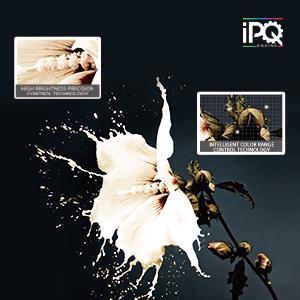 IPQ Engine
