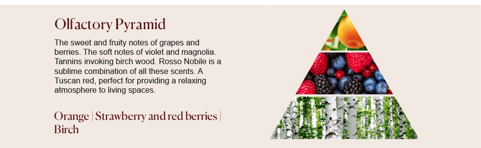 Rosso Nobile Diffuser's Olfactory Pyramid Orange strawberry red berries birch