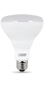 feit electric, BR30, led bulbs, lights, recessed lights, downlights