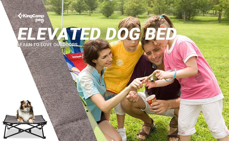 dog bed cot