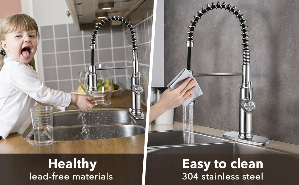 Watersong kitchen faucet