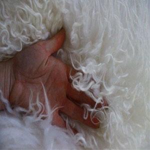 Sheepskin Curly Fur Pelt