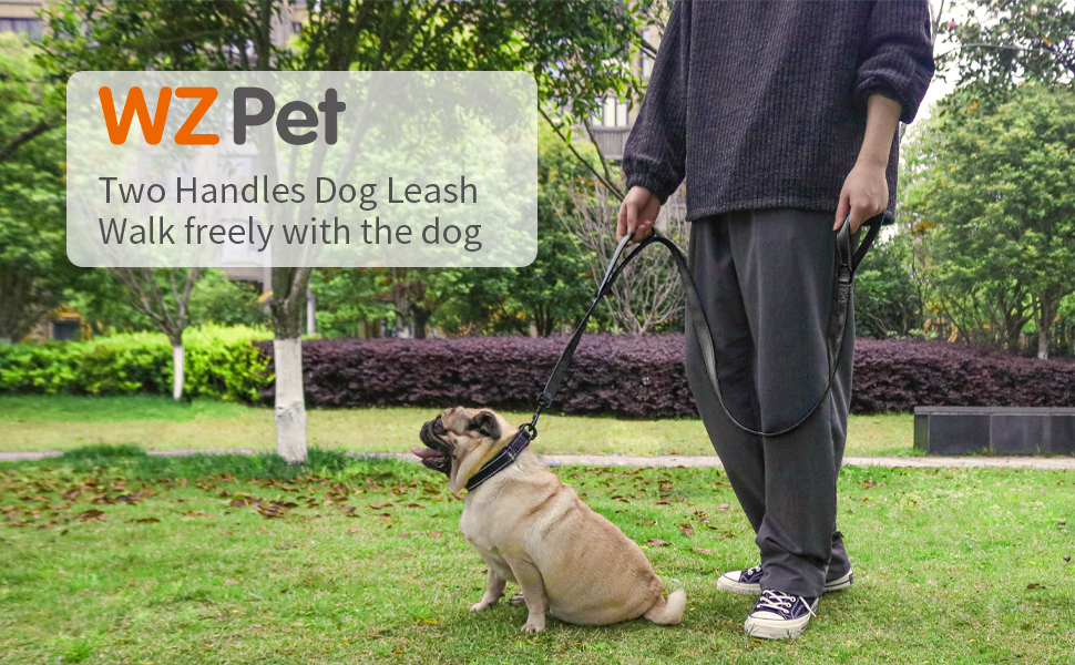 WZ PET TWO handles dog leash wlk freely with the dog