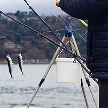 fish lure 2