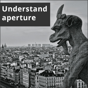 Picture of a stone gargoyle. White text reads: Understand aperture.