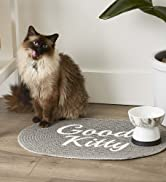 Cat standing by Good Kitty food mat