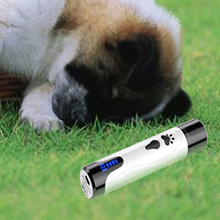Getting your dog accustomed to the dog nail grinder sound.