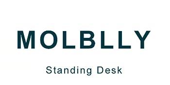 Molblly Home Office Desk