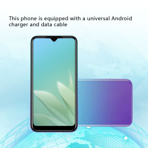 This phone is equipped with a universal Android charger and data cable