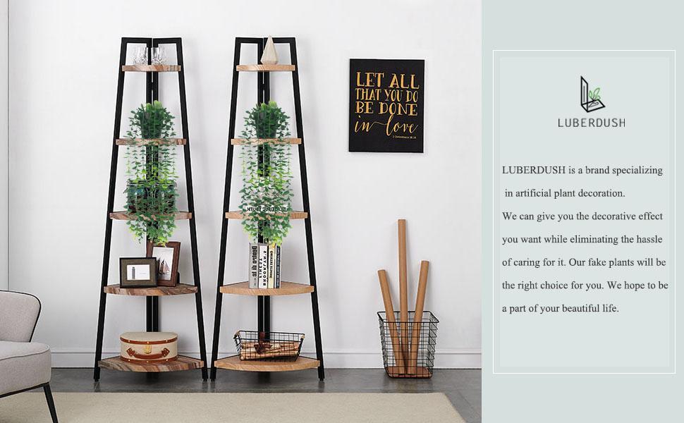 small hanging plants