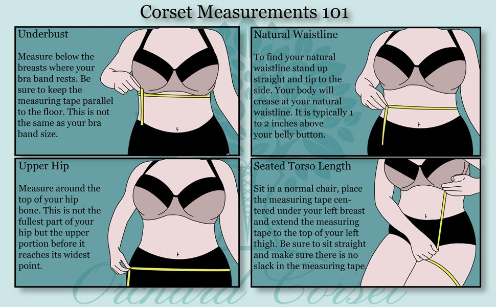 Our sizing infographic showing how to find the underbust, natural waist, upper hip and sitting torso