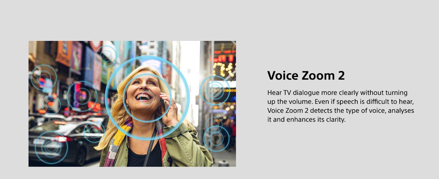 Voice Zoom 2
