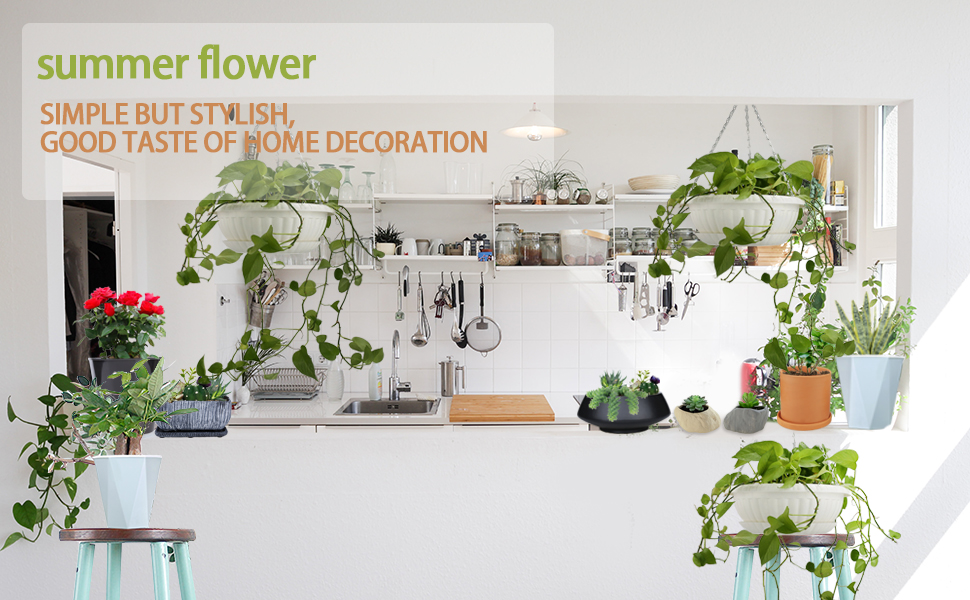 summer flower planters