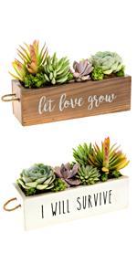 succulent decor windowsill planter windowsill succulent planter let love grow planter window sill