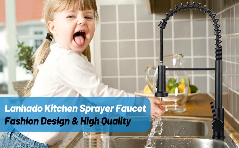 kitchen sink faucet with sprayer