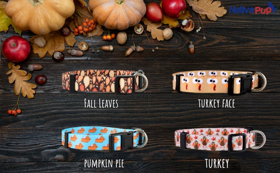 Native Pup Thanksgiving/Fall Collar Collection