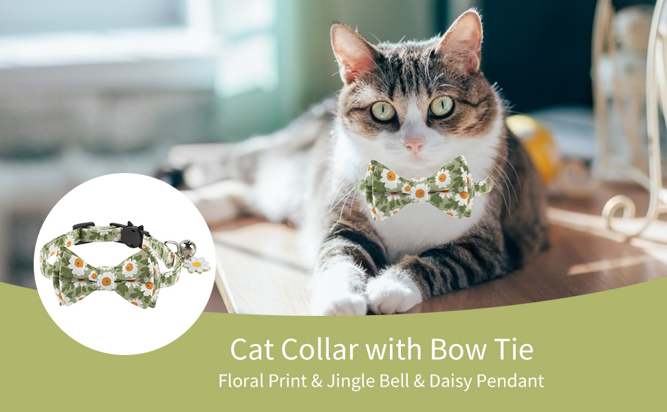 Green Breakaway Cat Collar Adjustable Safety Kitten Collars Ideal Size Pet Collars for Small Dogs