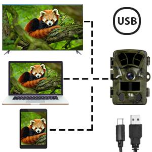 wildlife game camera