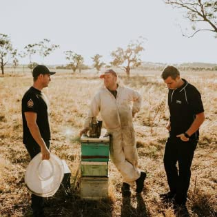 Honey Australia Field Photo