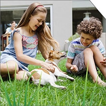 Outside surfaces, turf, and grass are clean and odor-free!