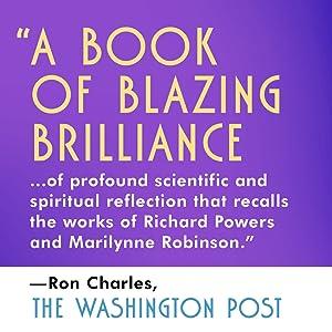 a book of blazing brilliance