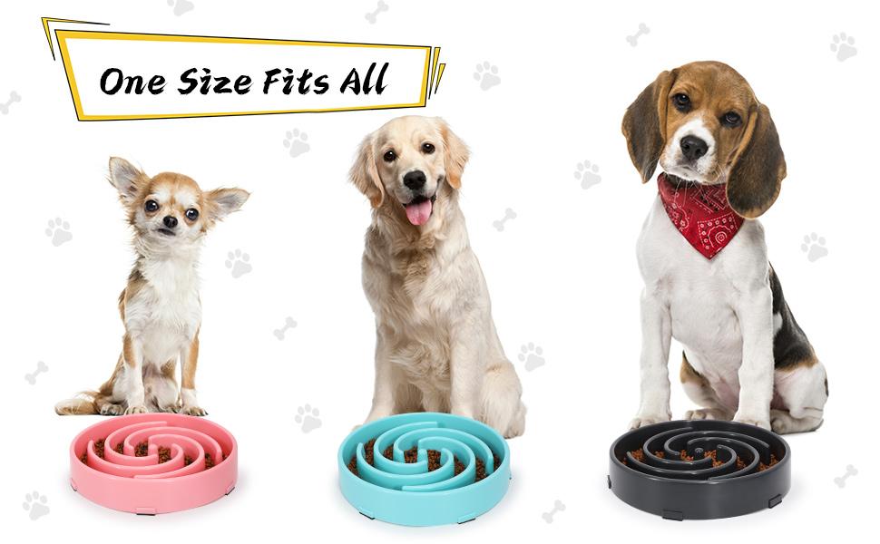 fun feeder slow eating dog bowl