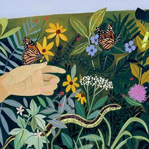 Monarchs in Natural Habitat